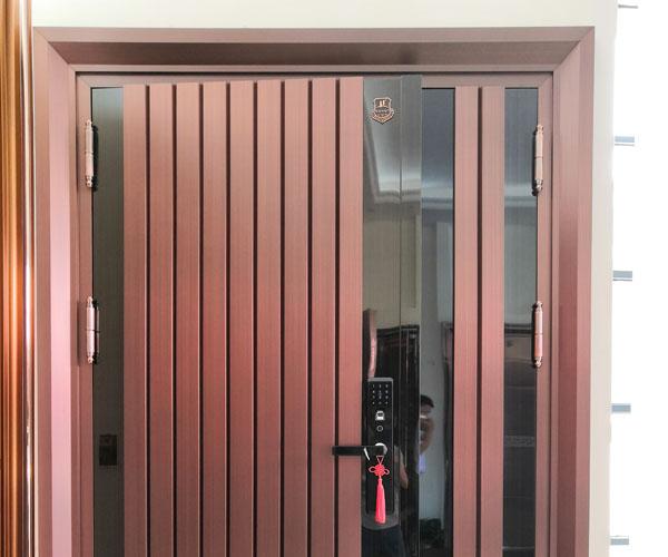 Stainless steel copper-plated door